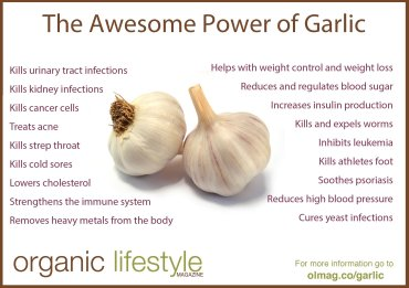 garlic-infographic